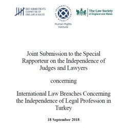 BHRC sends joint submission to Special Rapporteur on Judges and Lawyers regarding the situation of lawyers in Turkey