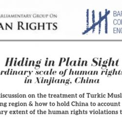 EVENT 26 June at 18:00: Hiding in Plain Sight-the extraordinary scale of human rights violations in Xinjiang, China
